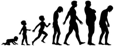 human-aging-process-male_large